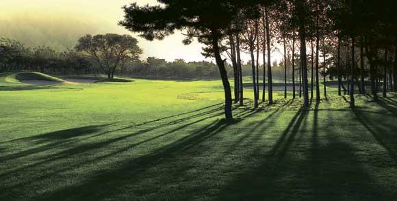 南山国际高尔夫球会会籍权益