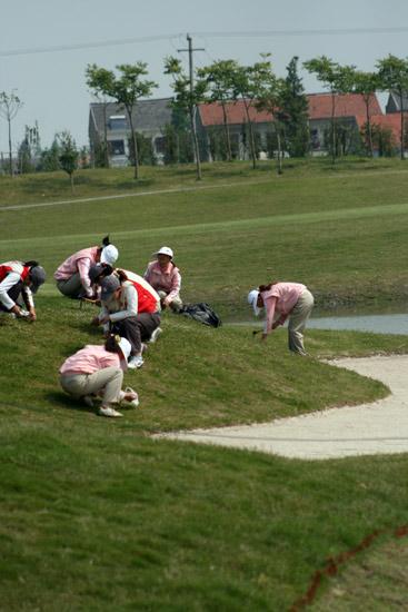 图文-中巡上海锦标赛前瞻球童忙碌工作
