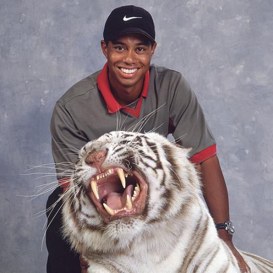 图文-伍兹打球生涯伟大时刻虎啸高尔夫球坛