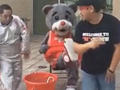 火箭熊冰桶挑战无压力