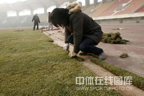 图文-河南建业主场铺新草为亚冠 工作人员修边