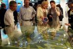 图文-香港马术展馆开馆 外国专家给出意见