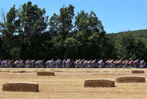 图文-环法自行车赛第14赛段结束比赛地风景如画