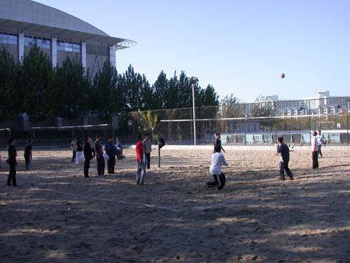 图文-CUVA排球文化节排球赛火热进行双方你来我往