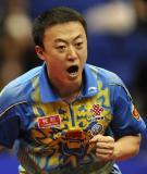 图文-世乒赛男单半决赛激战马琳为自己鼓劲