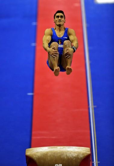 图文-世锦赛男子跳马决赛战况金牌选手空中反转