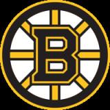 波士顿棕熊