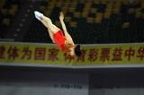 李丹在女单网上决赛中