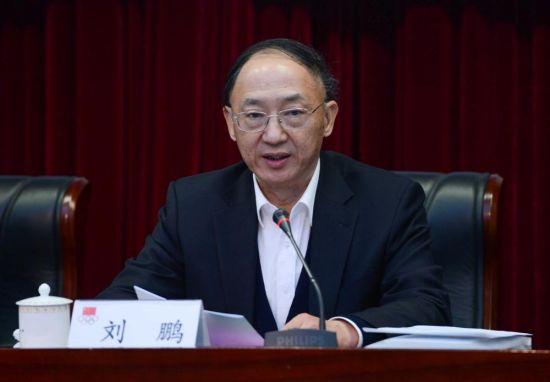 刘鹏做2012年工作报告