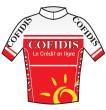 法国科菲迪斯车队(COF)